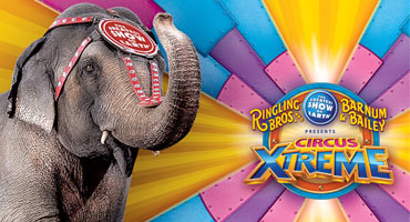 Circus2015_Thumb.jpg